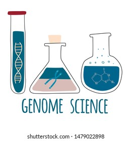 Three test tubes with helix DNA, chromosome, nucleotides. Genome science text. Genetic engineering and gene sequencing concept. Colorful doodle vector illustration in trendy cartoon style.