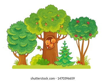 Three trees on a glade with berries and acorns. A squirrel sits in a hollow. Trees on a white background. Vector illustration in the cartoon style on the theme of the forest .