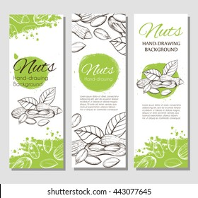 Three vector flyer with linear silhouettes of peanuts and green splashes in the background. Sketch of plants in vintage style. Brochures with nuts illustrations for design