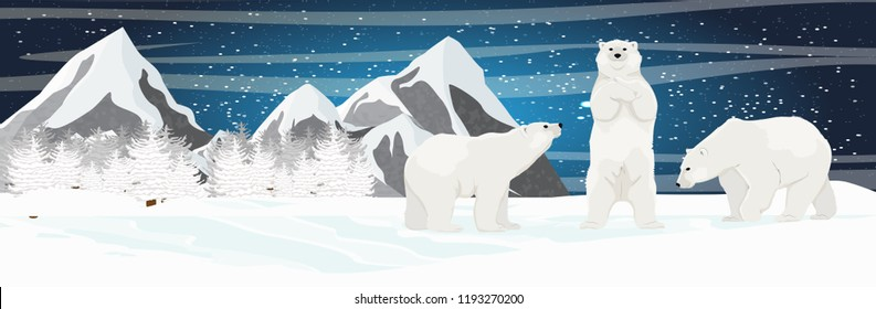 Three white polar bears. Mountain and spruce forest on the horizon. Starry night in the North. Landscapes of the Arctic, Canada and the Nordic countries