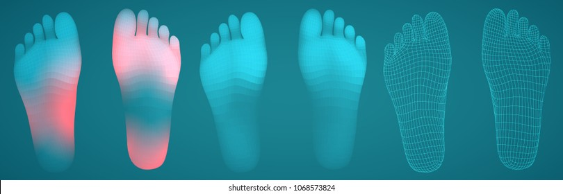 three-dimensional female feet. vector template. finished item. feet care