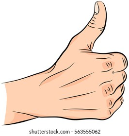 Thumb up. Gesture of approval. Sign of like. Isolated on white background.