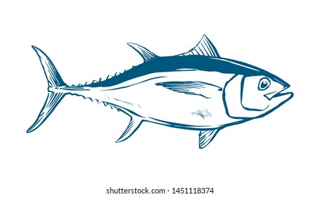 Thunnus thynnus. Color Hand Drawn red tuna. Design elements for logo, label, emblem, sign, brand mark. Vector illustration for product, company, restaurant label