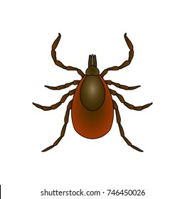 Tick parasite. hand-drawn Sketch of Tick. Mite. Tick isolated on white background. Vector illustration