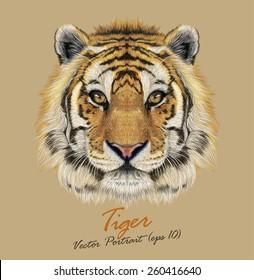 Tiger animal face. Vector cute Bengal, Siberian tiger head portrait. Realistic fur striped beast of tiger. Predator eyes of safari wildcat. Big cat head on beige background.