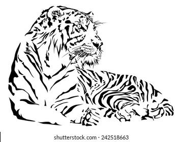 Tiger black and white, illustration vector.