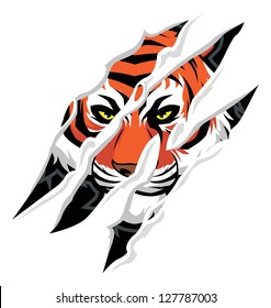 Tiger Claws Images Stock Photos Vectors