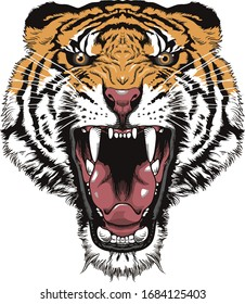 Tiger face art in white background