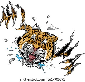 Tiger clipart. Free download transparent .PNG   Creazilla