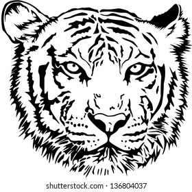Tiger Head Outline Images, Stock Photos & Vectors ...