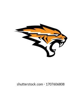 Tiger head logo icon vector. Eps10.
