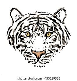 Tiger head, vector illustration