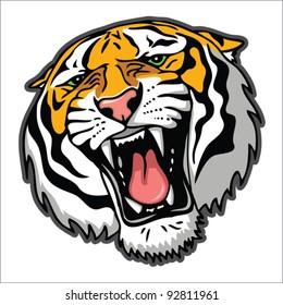Tiger head - vector illustration