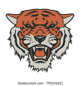 Tiger head, vector illustration. T-shirt graphics. Tiger logo