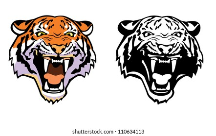 tiger head ,vector image,front view picture isolated on white background,colour and black white illustration