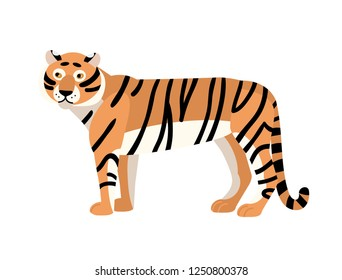 Tiger isolated on white background. Gorgeous exotic carnivorous animal with stripy coat. Graceful large wild cat or felid. Endangered species. Colorful vector illustration in flat cartoon style.