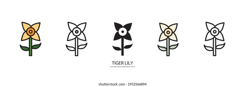 TIGER LILY vector type icon