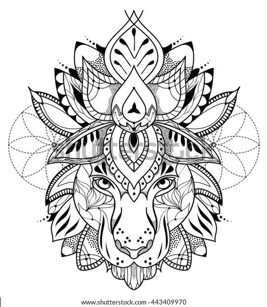 Tiger Lotus