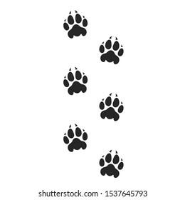 Tiger paw print. Safari park. Isolated paw prints on white background
