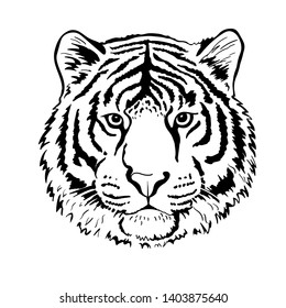 Tiger portrait head isolated on white background. Template. Illustration. Close-up. Clip art. Hand Painting. Ink. Vector