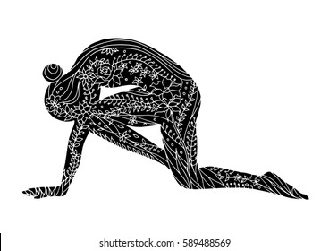 tiger pose yoga 7 chakra vector flower floral drawing hand drawn zentangle illustration design, (Vyaghrasana)
