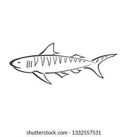 Tiger shark character abstract ink hand drawn vector logo cartoon. Simplified retro illustration. Ocean blue. Sea animal curve paint sign. Doodle line sketch. Element design, wallpaper, fabric print.