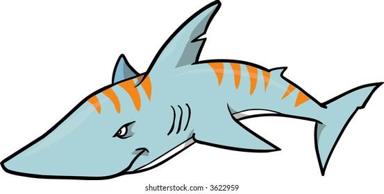 Tiger shark Vector Illustration