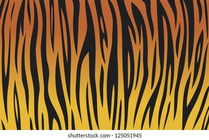tiger skin background (animal texture)