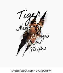 tiger slogan with tiger face in claw mark illustration