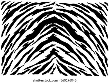 Tiger texture abstract background.