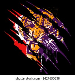 A tiger that looks like he is peeping through an area that he clawed through. Claw scratches vector image on black background, t-shirt design.