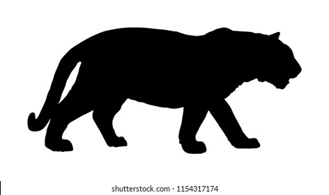 Tiger vector silhouette illustration isolated on white background. Big wild cat. Siberian tiger (Amur tiger - Panthera tigris altaica) or Bengal tiger. Tatoo sign.
