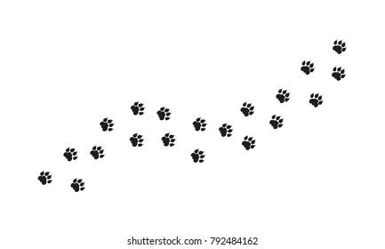 Tiger Walking Foot print designs, Lion Foot print Pattern
