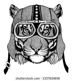 Tiger, wild cat Wild animal wearing motorcycle, aero helmet. Biker illustration for t-shirt, posters, prints.