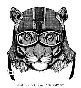 Tiger, wild cat Hipster animal wearing motorycle helmet. Image for kindergarten children clothing, kids. T-shirt, tattoo, emblem, badge, logo, patch