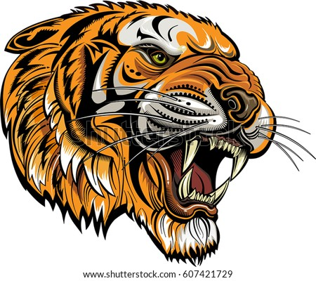 Tigers Face Saber Toothed Tiger Tattoo Stock Vector Royalty Free
