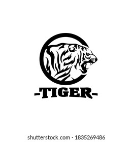 Tigers Team Sports Logo Template Vector