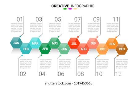 Timeline for 12 months, 1 year, Timeline infographics design vector