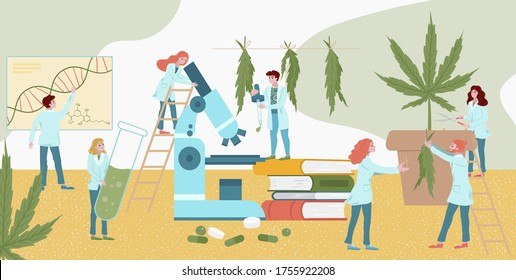 Tiny character lab medicines plant research cannabis, male female analysis fellow flat vector illustration. Laboratory assistant look microscope, medical book study marijuana health effect.