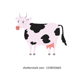 Tired and bored Holstein Friesian Cow with black pots and patterns on body. Side view. Cow with pink udder, nose and sharp horns