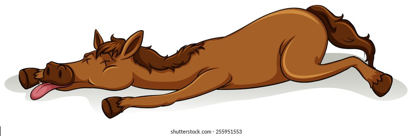 Tired horse on a white background