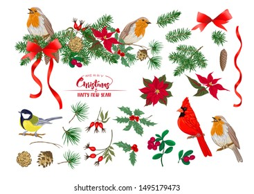 Tit bird, Robin bird, Cardinal bird, Christmas wreath of spruce, pine, poinsettia, dog rose, fir. Set of elements for design Colored vector illustration. Isolated on white background.