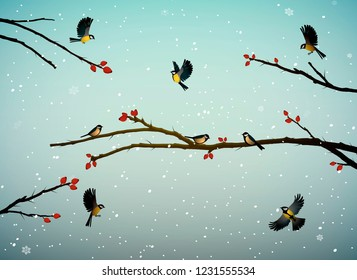 titmouse birds on the dog-rose tree branch in winter season, family of birds in snowy cold whether, vector
