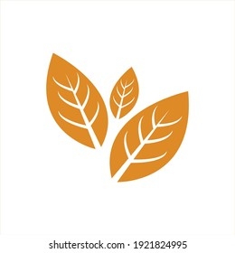 tobacco leaf vector logo ecology nature element vector icon