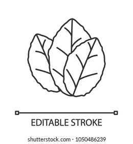 Tobacco leaves linear icon. Thin line illustration. Mint. Contour symbol. Vector isolated outline drawing. Editable stroke