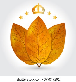 tobacco leaves vector illustration