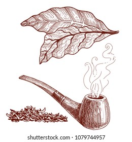 Tobacco pipe and tobacco leaves, set of vector illustrations for label design.