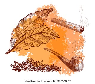 Tobacco set sketches: tobacco pipe with smoke and leaves, chopped tobacco for a tpipe and a cigarette, a cigar.