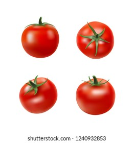 Tomato collection. Photo realistic fresh red ripe tomatoes with green leaves isolated on white background. 3d vector gradient mesh illustration. Vegetarian food. Vegetable theme design elements set.
