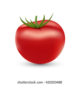 Tomato fruit isolate with white background (Vector eps10)
